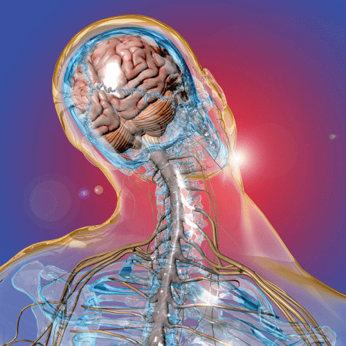 Neurotrauma-Symposium-image-e1475605740975