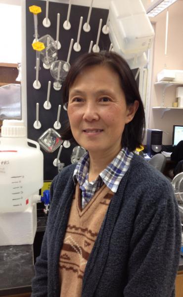 Xiaokui Ma, MD